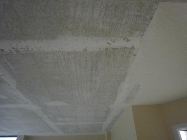 Popcorn Texture over Concrete-03-02-10-palm-view-018.jpg