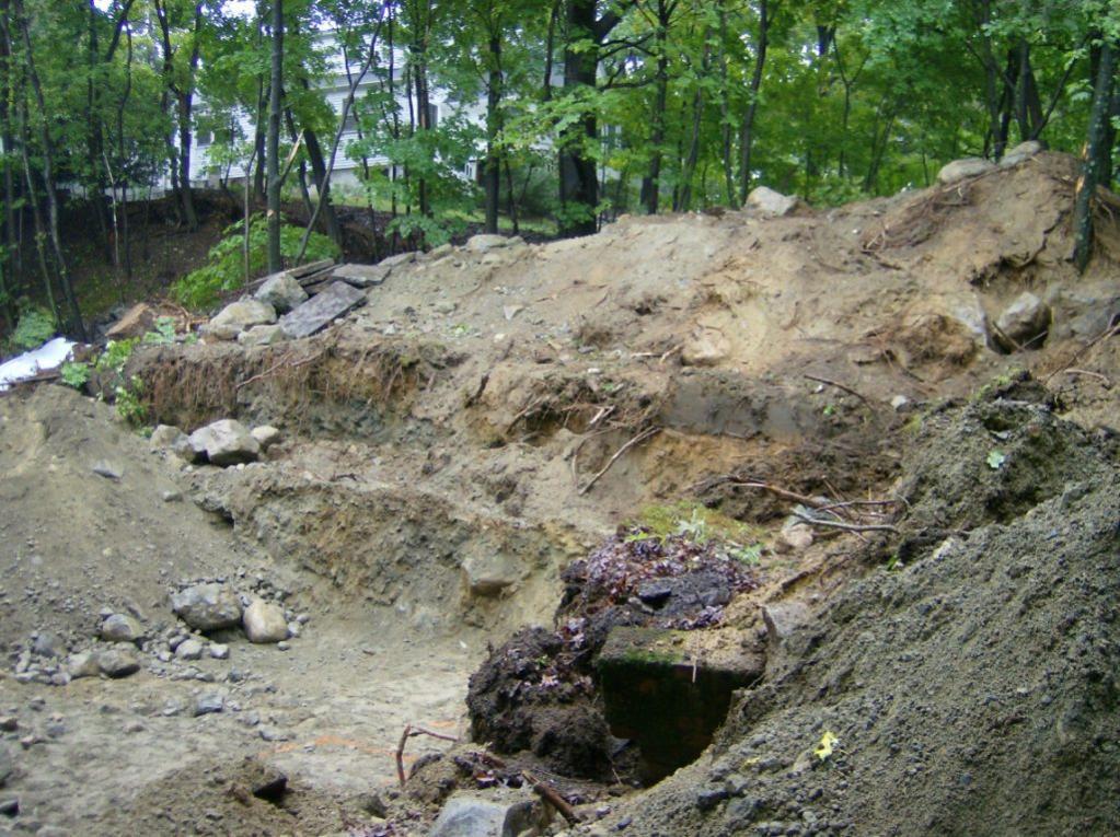 skid steer bucket with teeth or mini-excavator?-1-001.jpg