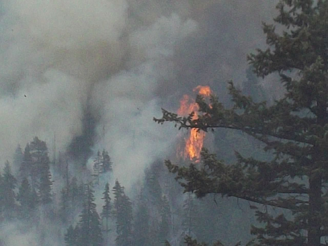 California burning again...-100_0060.jpg