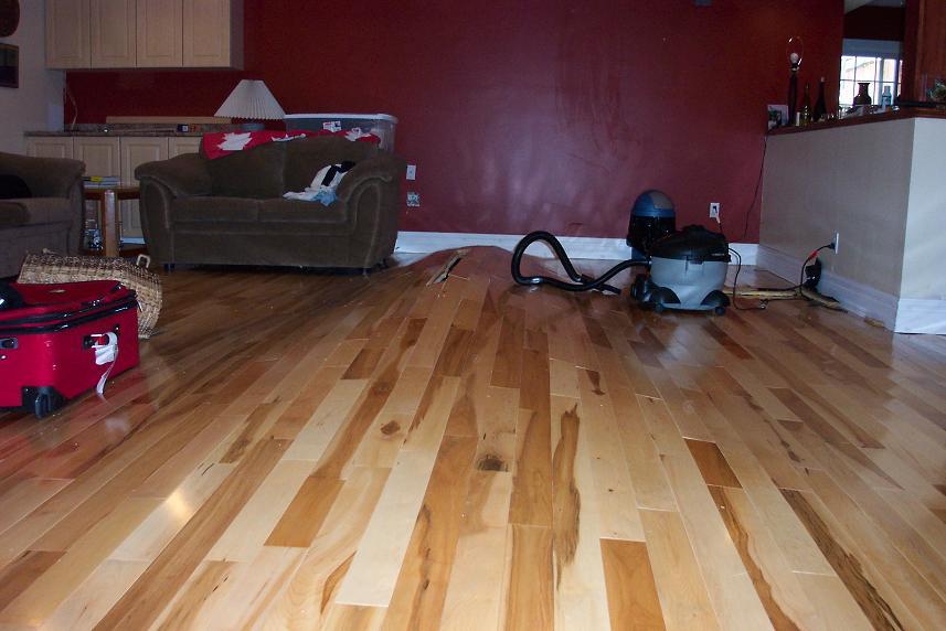 Basement Floor Dilemma 100_2714