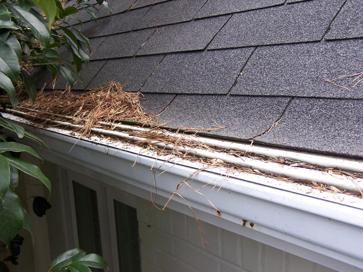 gutters and gutter guards - roofing - contractor talk