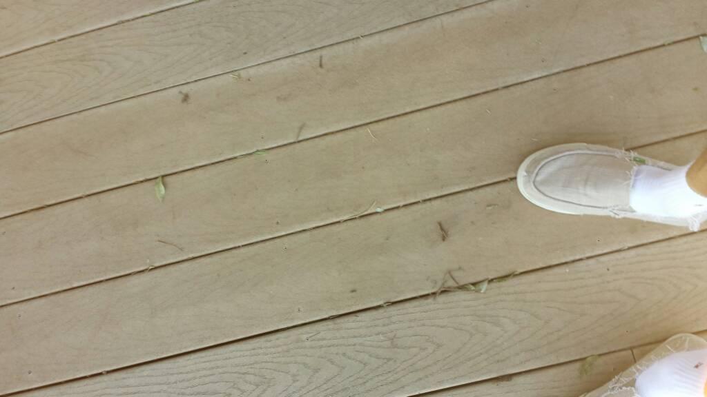 Deck Board Decay Decks Amp Fencing Contractor Talk