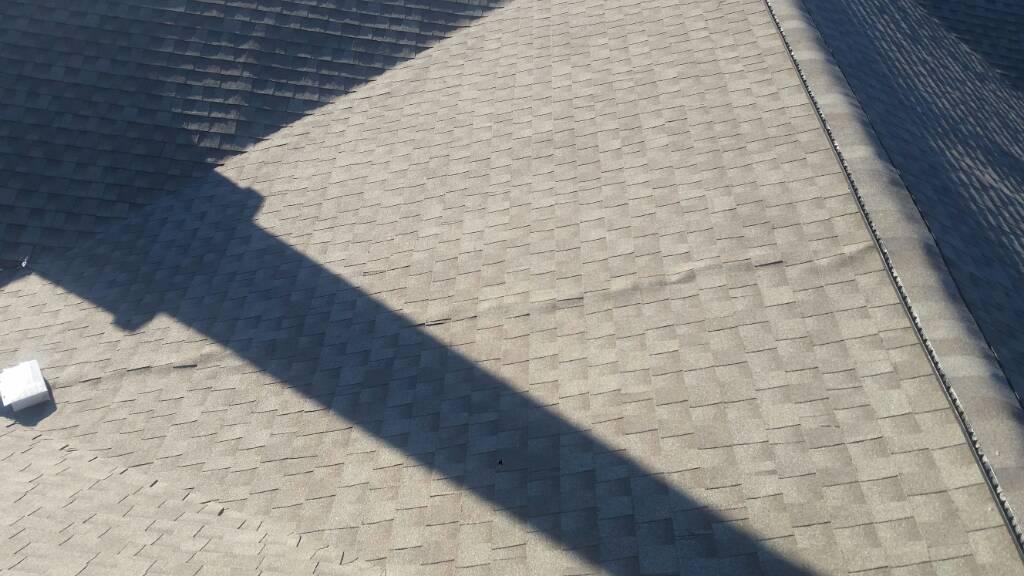 Buckling shingles-1452386623816.jpg