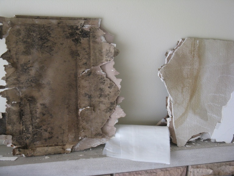 Best practices for removal of moldy drywall drywall for Is there asbestos in drywall