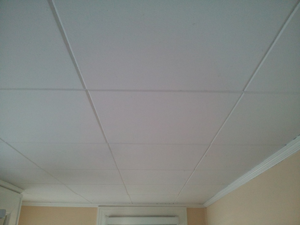 Possible Asbestos Ceiling Tiles Health & Safety Contractor Talk