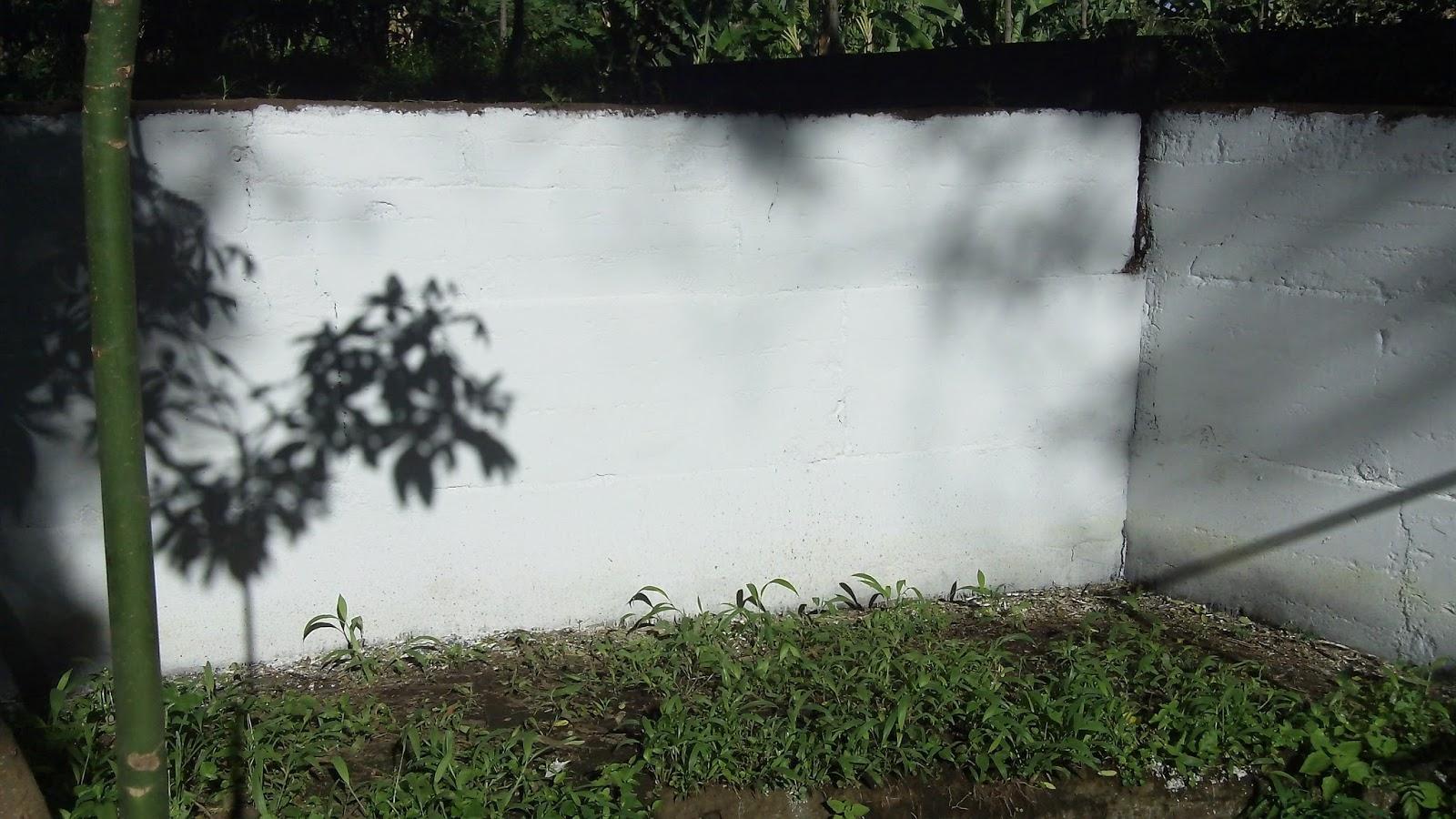 Lime wash brick-303_0577-1-.jpg