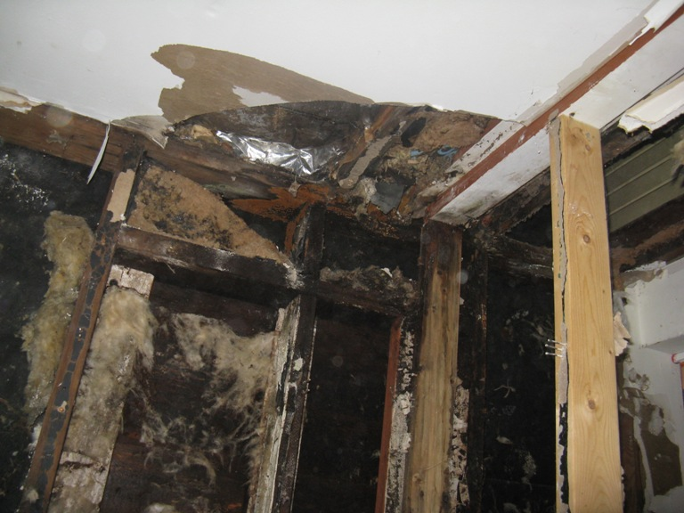Best practices for removal of moldy drywall ???-410-crane-royal-oak-mi-back-law-house-014.jpg