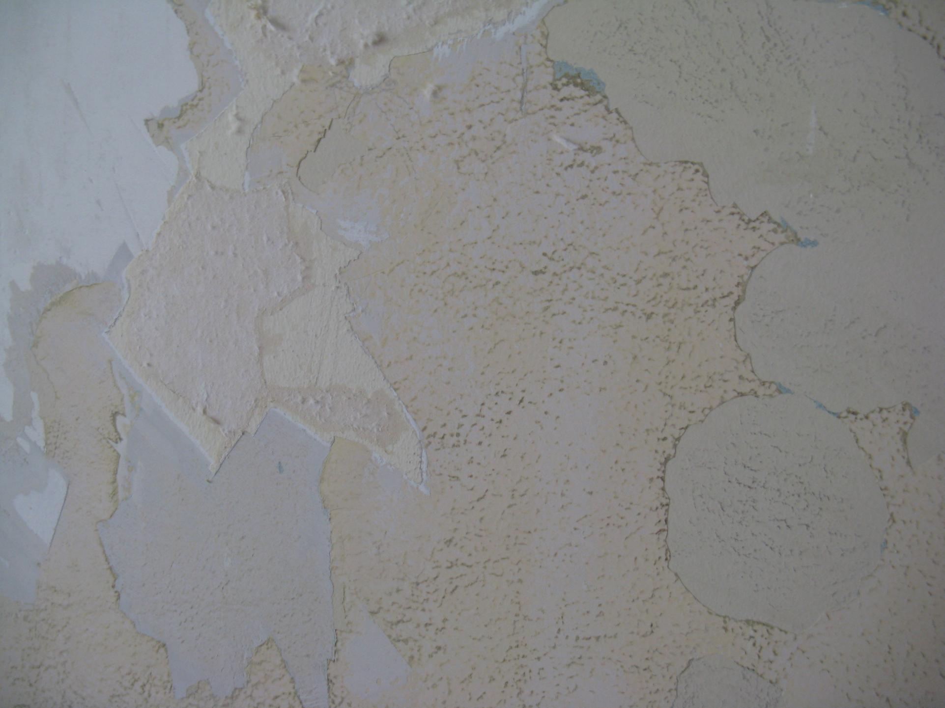 paint flaking from the ceiling...cause/solution??-90-lochmoor-dec-26-2008-intil-jan-2-2009-132.jpg