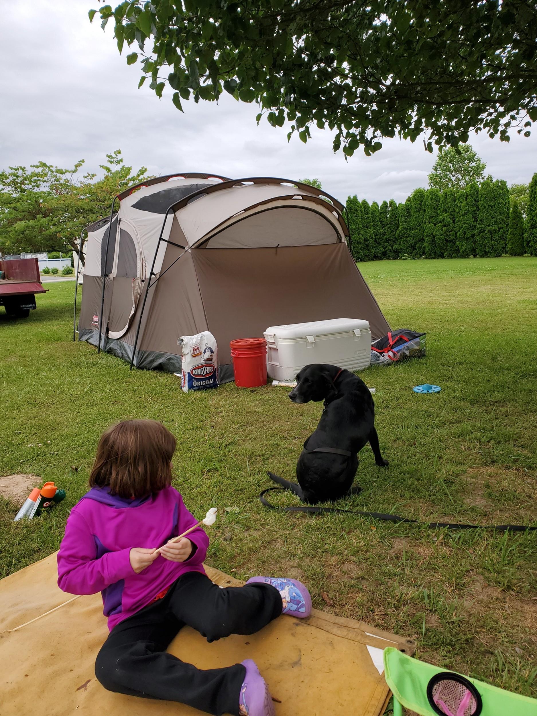 Things I Love (2)-backyard-camping2.jpg