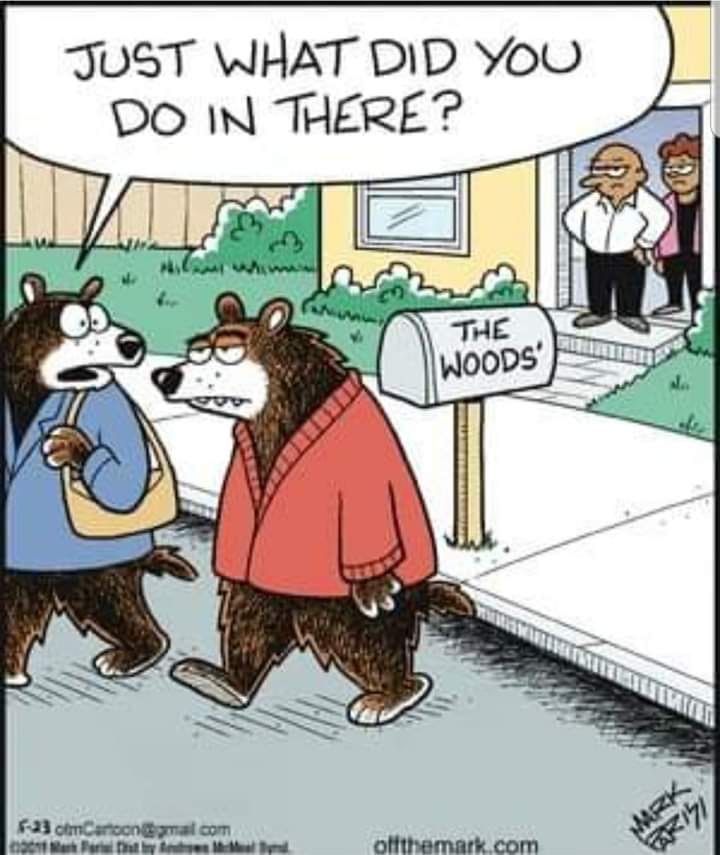 The Official CT joke duel page-bear-woods-comic.jpg