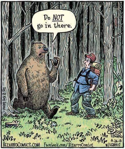 The Official CT joke duel page-bear-shat-woods.jpg