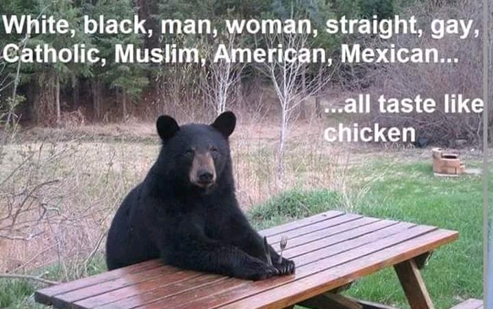 Random Pictures for Fun.-bears-say-we-all-taste-like-chicken.jpg
