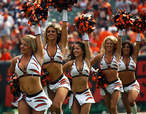 NFL-2012-13 season-ben-gals.jpeg