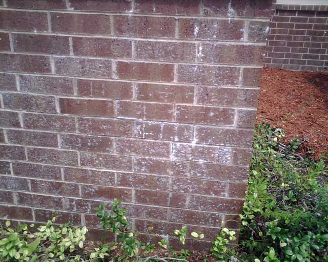 Calcium Deposits On Brick - Pressure Washing - Contractor Talk