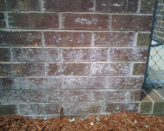 Calcium Deposits On Brick - Pressure Washing - Contractor Talk