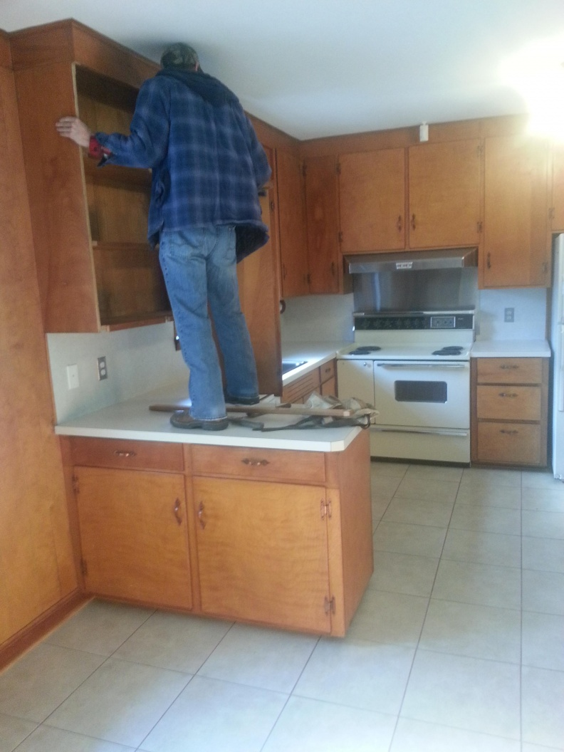 Kitchen rebuild with lots of lighting.-cohenbe1lo.jpg