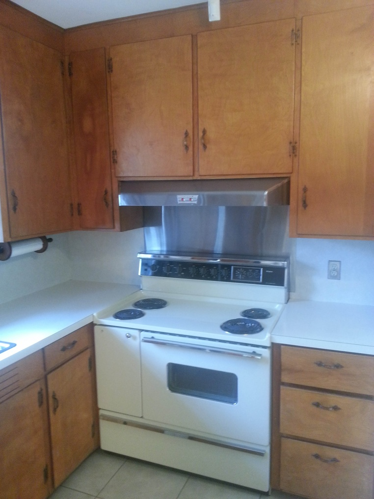 Kitchen rebuild with lots of lighting.-cohenbe2lo.jpg