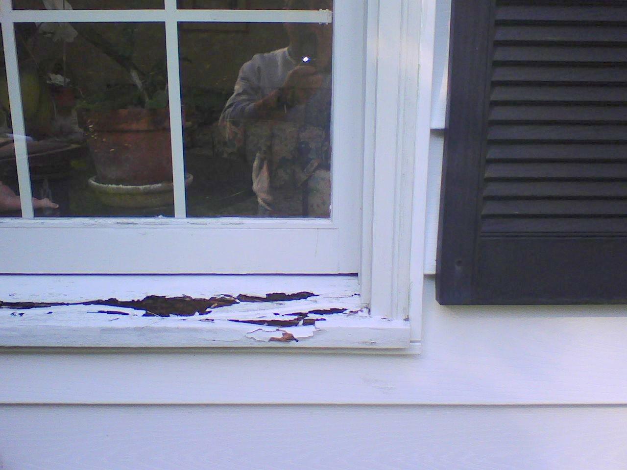 Windows Rotten Sill Windows Siding And Doors