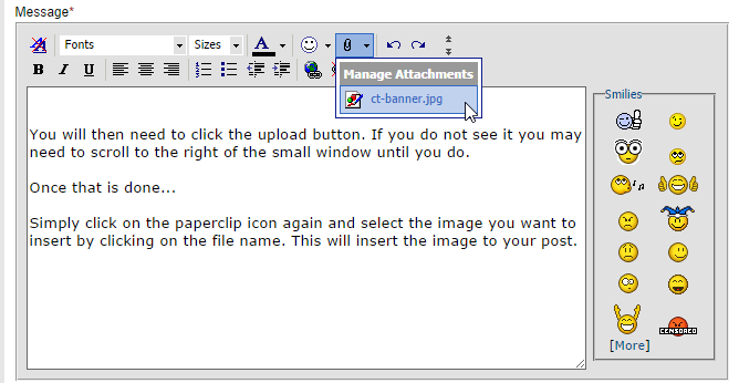 How To Insert Images Into Your Posts-ct4.png