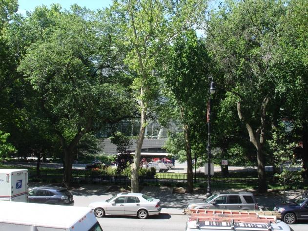 Views while working-darbas-ir-unguriai-020.jpg