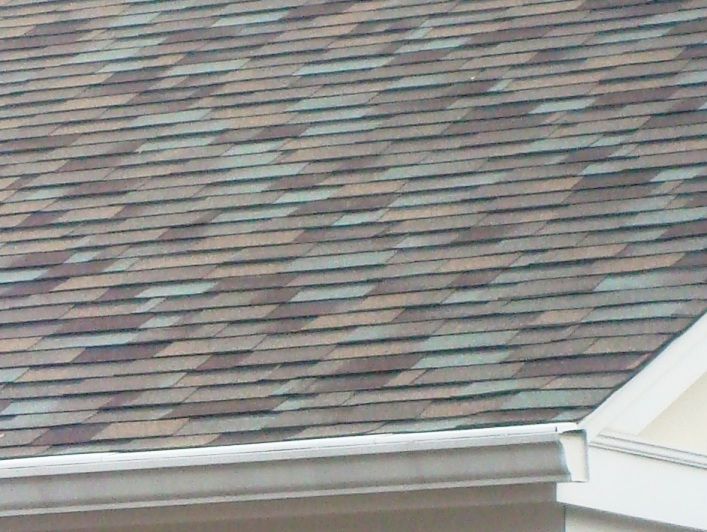 What Kind Of Shingle Is This Roofing Contractor Talk