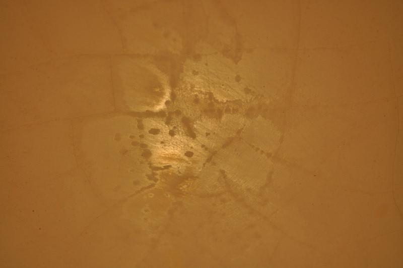 Alligator Cracking Lead Based Paint In Bathroom Painting