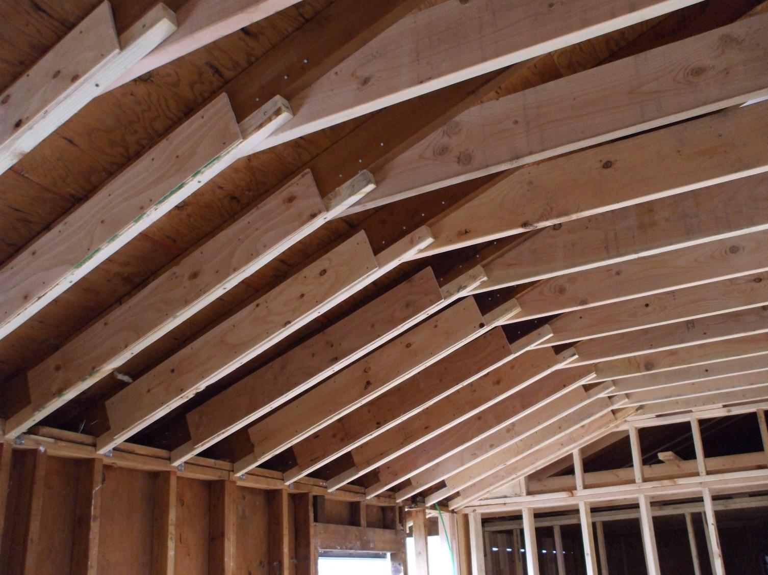 Garage - Rafters Upgrade-dscf1697.jpg
