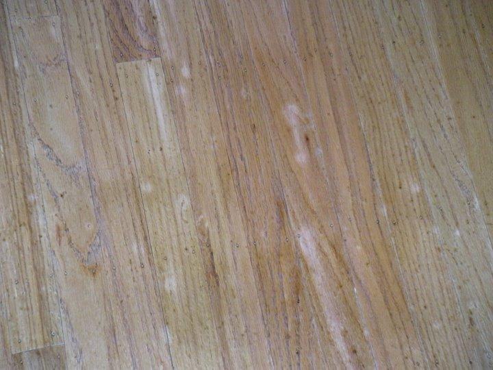 Refinish hardwood floors how to refinish hardwood floors for Resurfacing wood floors