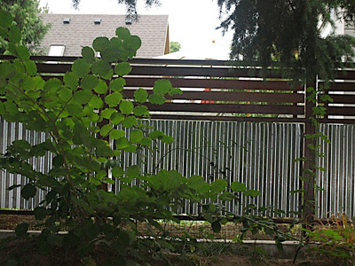 corrugated metal fence. Exellent Fence Corrugated Metal Fence For U