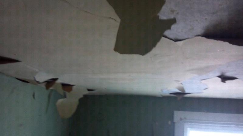 Old cracked plaster ceiling, skim coated now peeling-forumrunner_20120216_225806.jpg