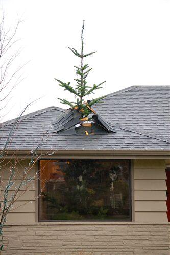 Vintage roof-griswold-cottage.jpg