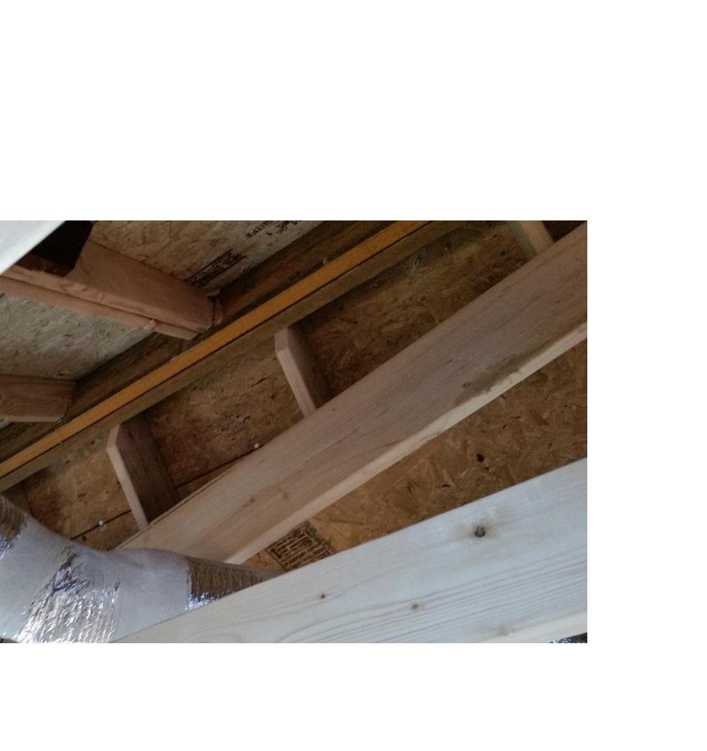 ridge vent not vented-house3.jpg