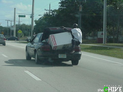 Big Box parking lot-DIY Photo of the day-idiot-moron-dumb-6.jpg