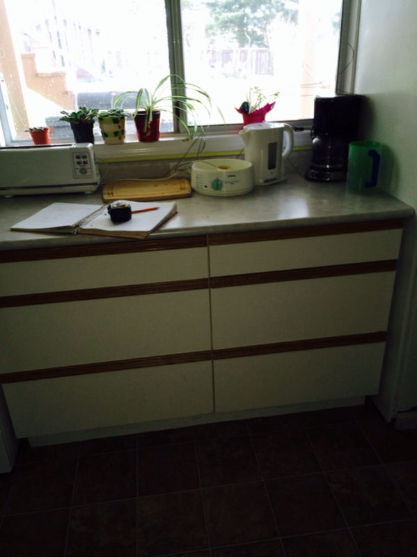 Crazy site built cabinet business idea-image-1780317125.jpg