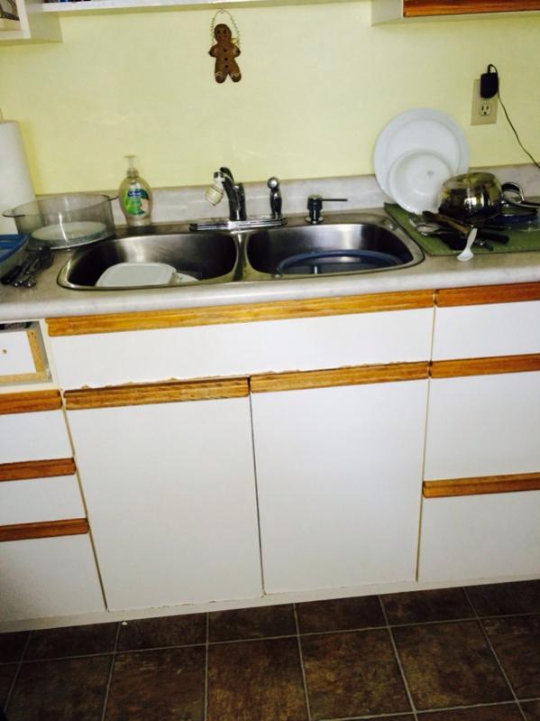 Crazy site built cabinet business idea-image-3093074374.jpg