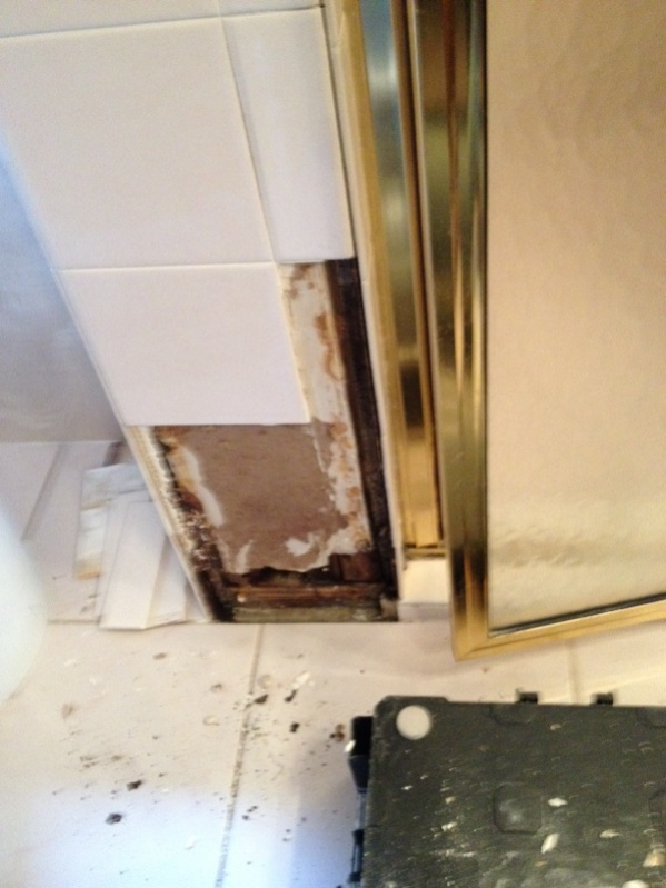 Question about tile backer?-image-3581674902.jpg