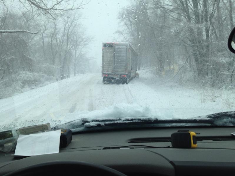 Blizzard- Buffalo, NY-image-3770031359.jpg
