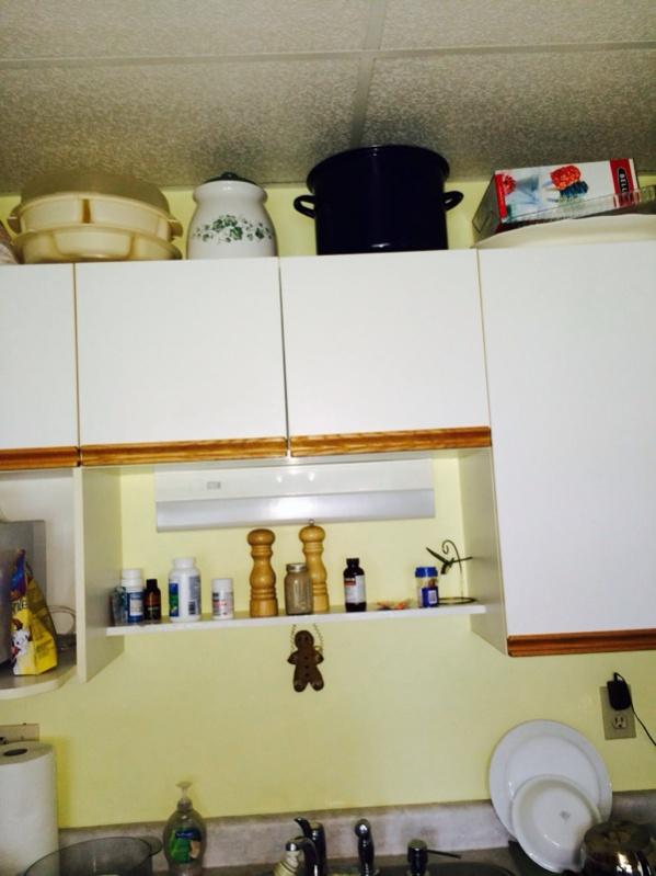 Crazy site built cabinet business idea-image-3948329683.jpg