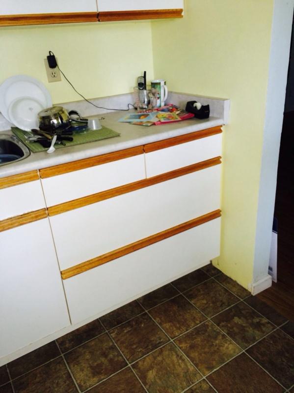 Crazy site built cabinet business idea-image-4080045763.jpg