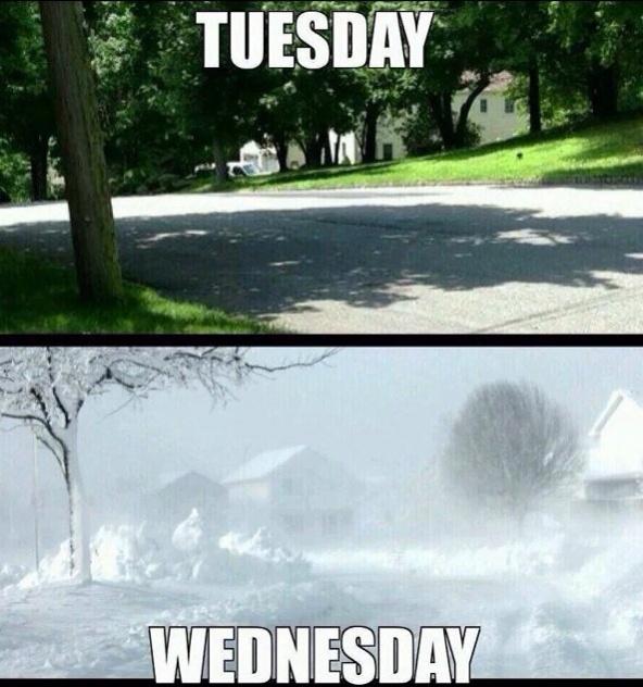 Blizzard- Buffalo, NY-image-713098379.jpg
