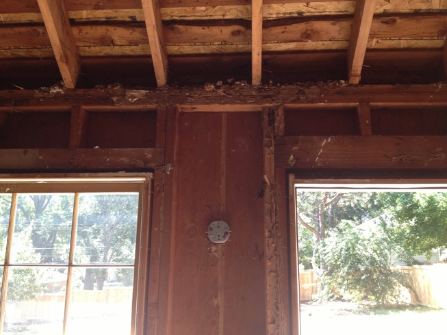 Temporary Rafter Support for Clipped Ceiling-image3.jpeg