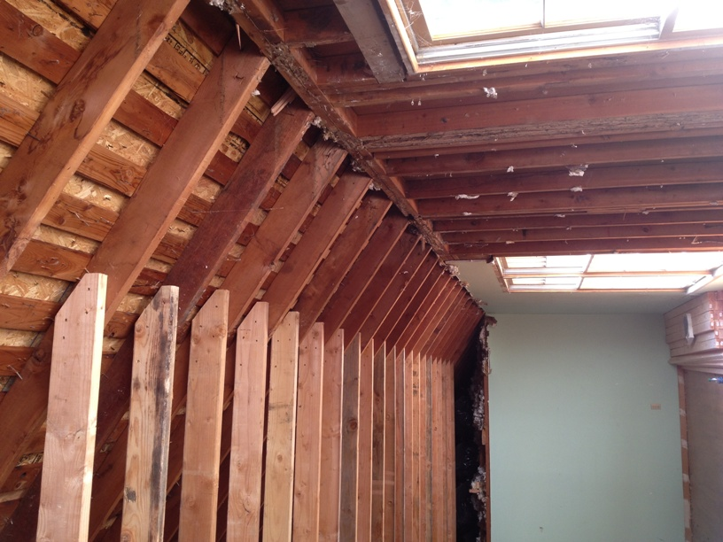 Temporary Rafter Support for Clipped Ceiling-image4.jpeg