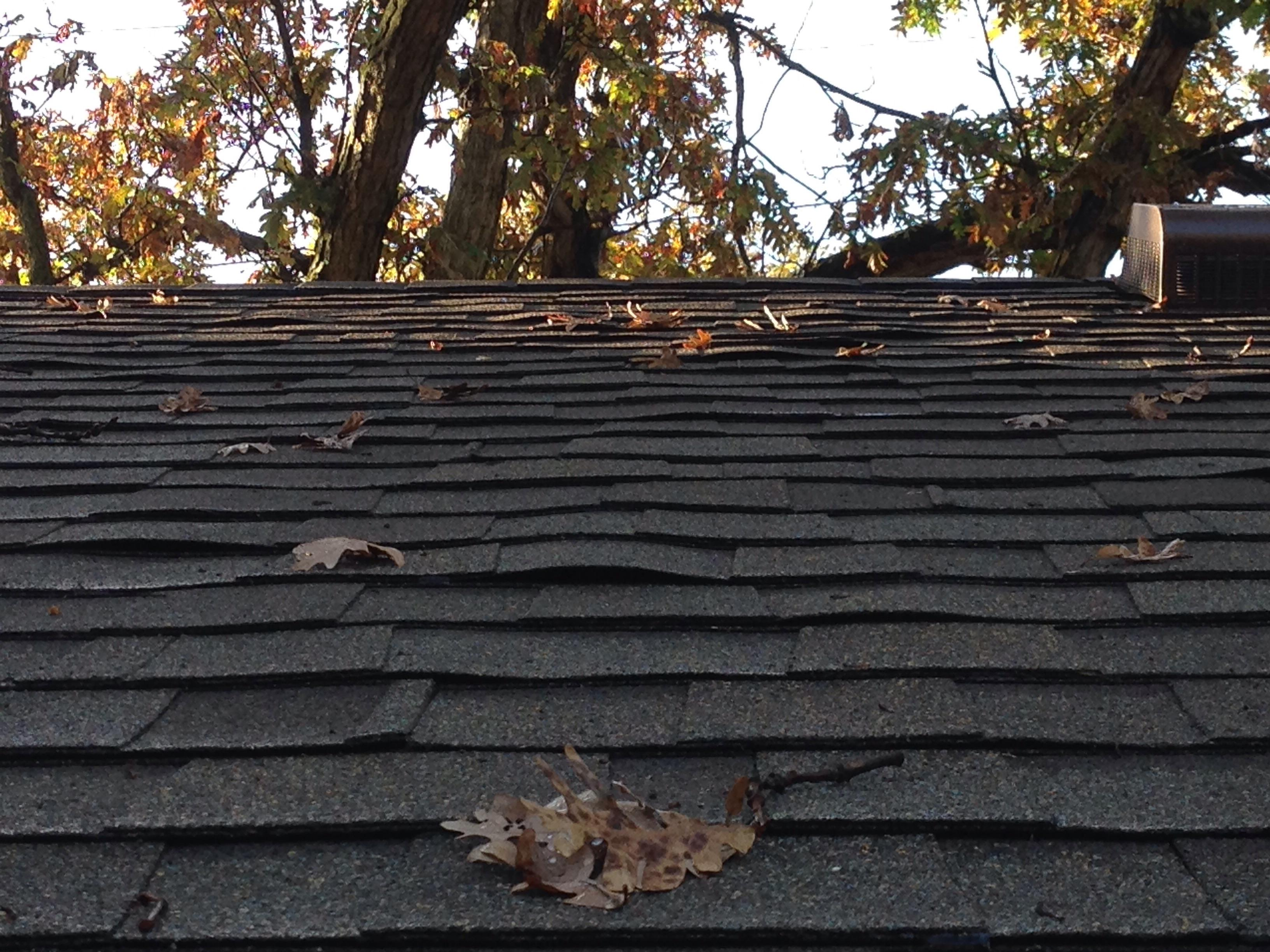 Shingle Buckling Advice Roofing Contractor Talk