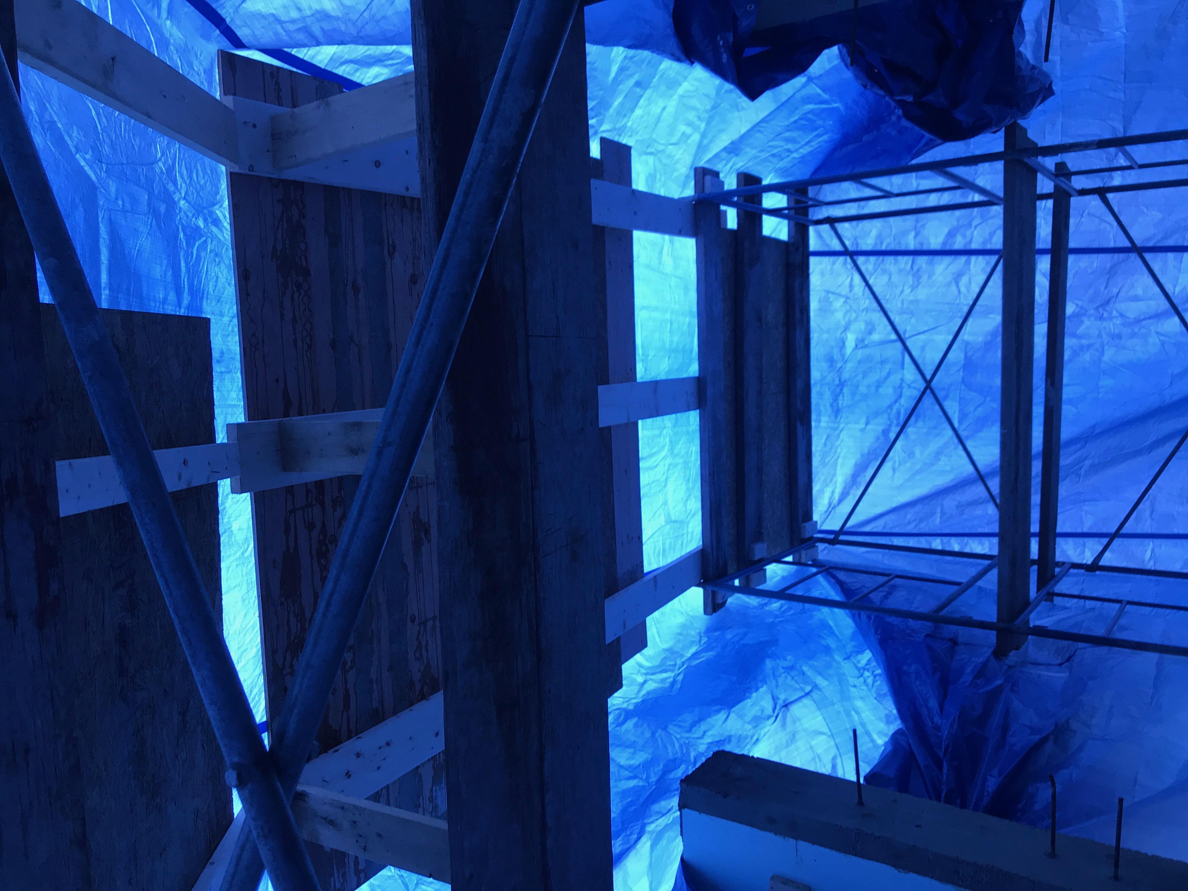Im feeling blue-img-0646.jpg