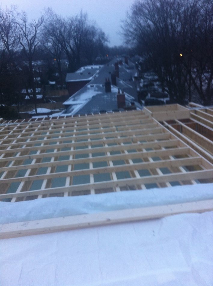 Flat Roof Framing : Flat roof framing contractor talk