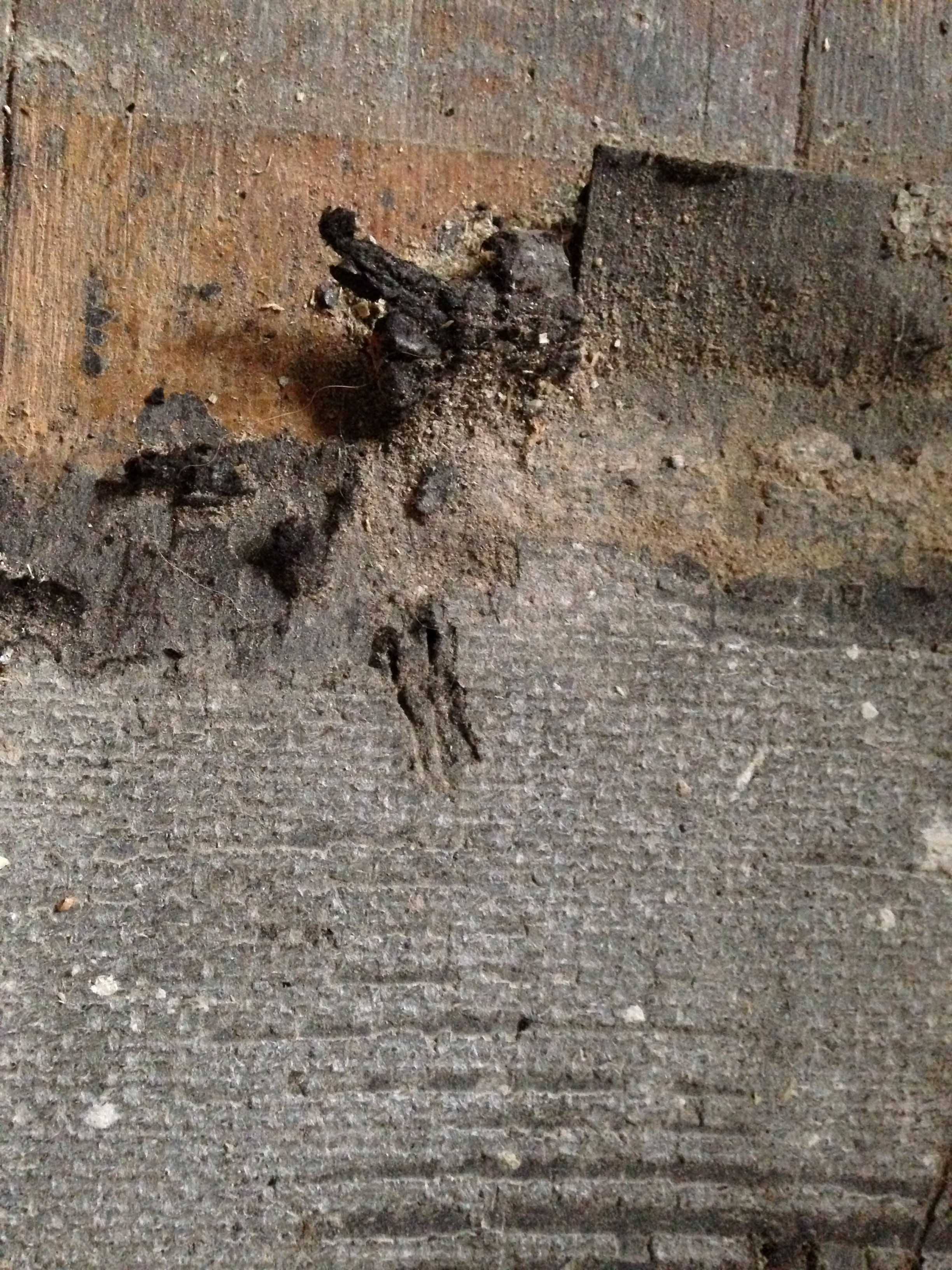 Attractive Identifying Flooring Underlayment (asbestos?)
