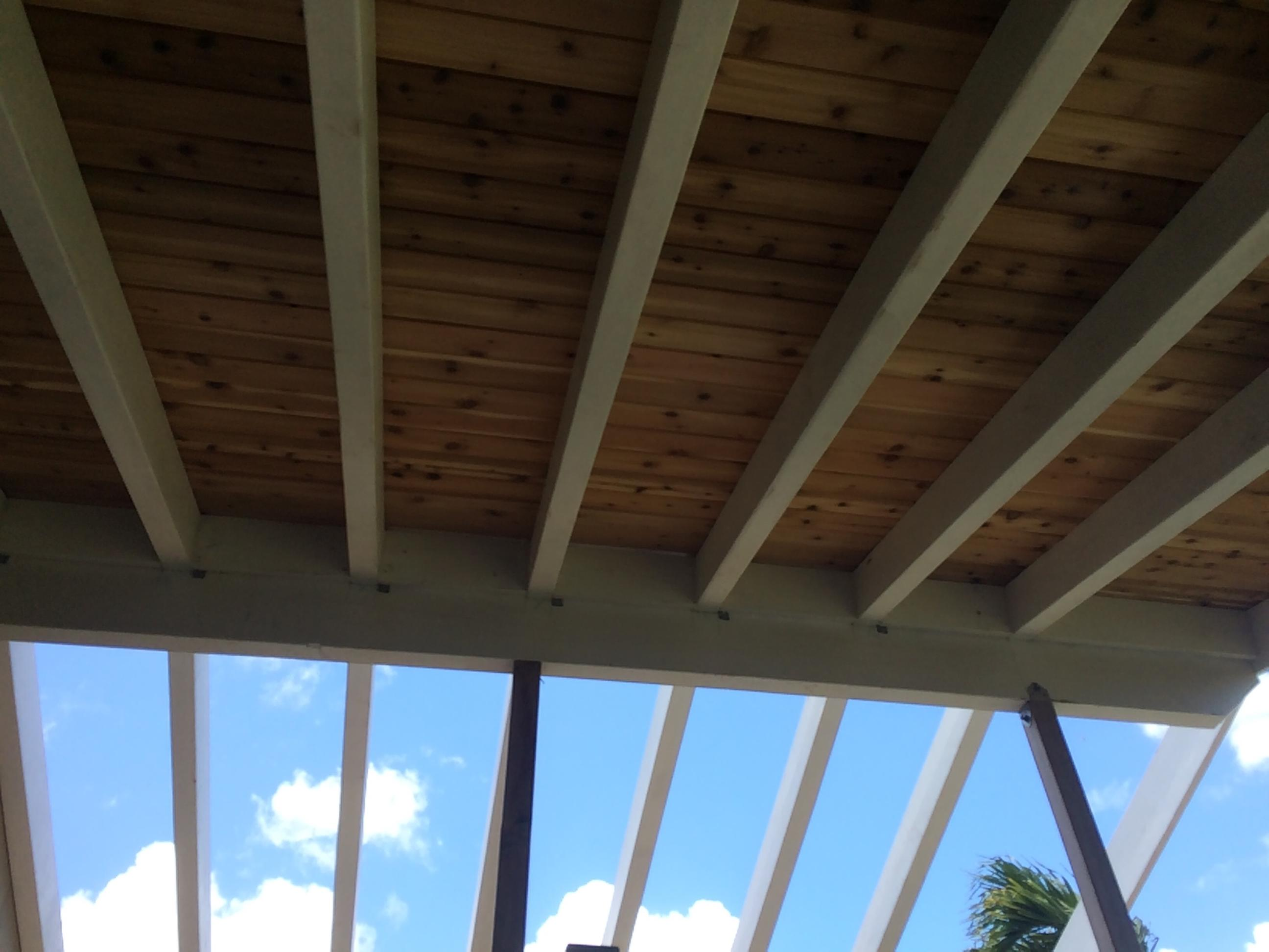 What would you call a roof over a patio?-img_1662.jpg