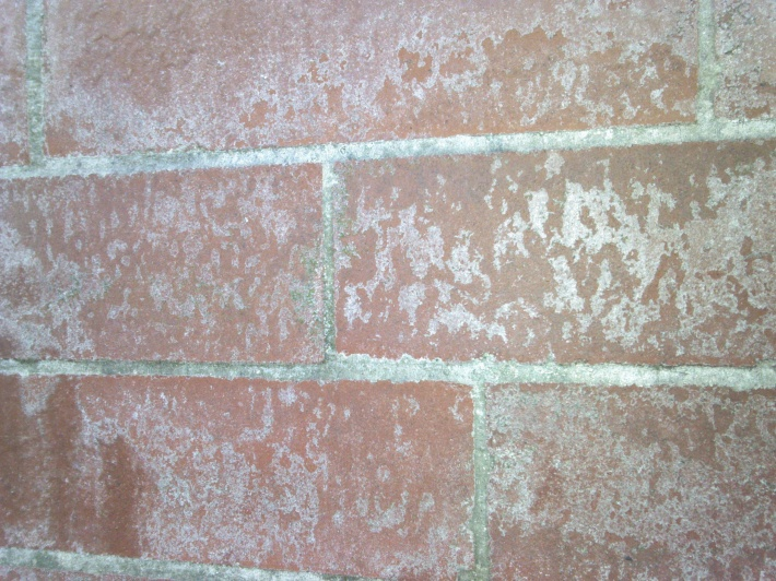Can T Get This White Stuff Off Brick Wall What Is It