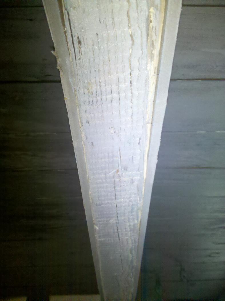 Subfloor/Joist Damage-img_20130207_114846.jpg