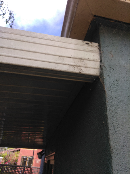 Removing an awning/porch cover thing...-img_20190705_093607.png